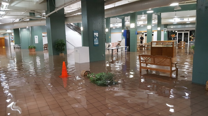 Dole Mall Flooded